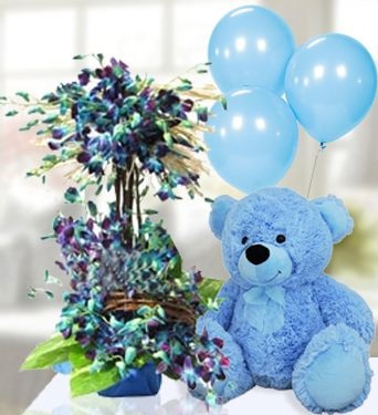 5 Air filled Balloons (NOT GAS) tied to 12 Inches BlueTeddy bear with 20 Blue orchids in 2 Tier basket