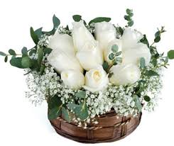 An Arrangement of 15 white roses