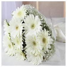 A bouquet of 24 white gerbera flowers